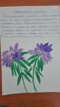 Растения и животни в Странджа планина  - СУ Никола Йонков Вапцаров - Царево